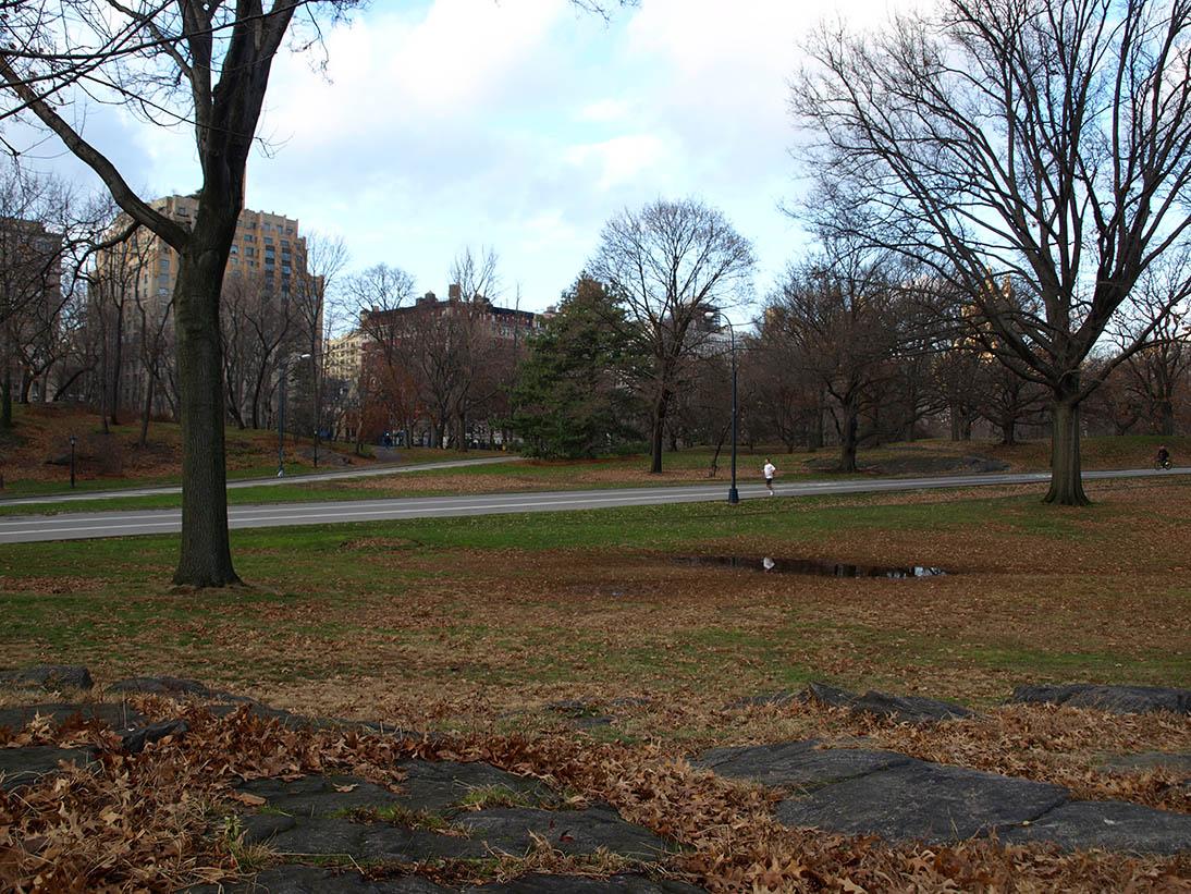 Central Park Hills