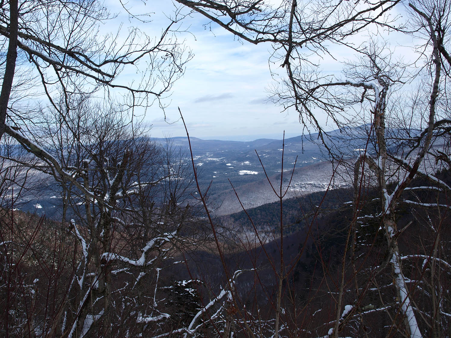 Becker Hollow Trail View