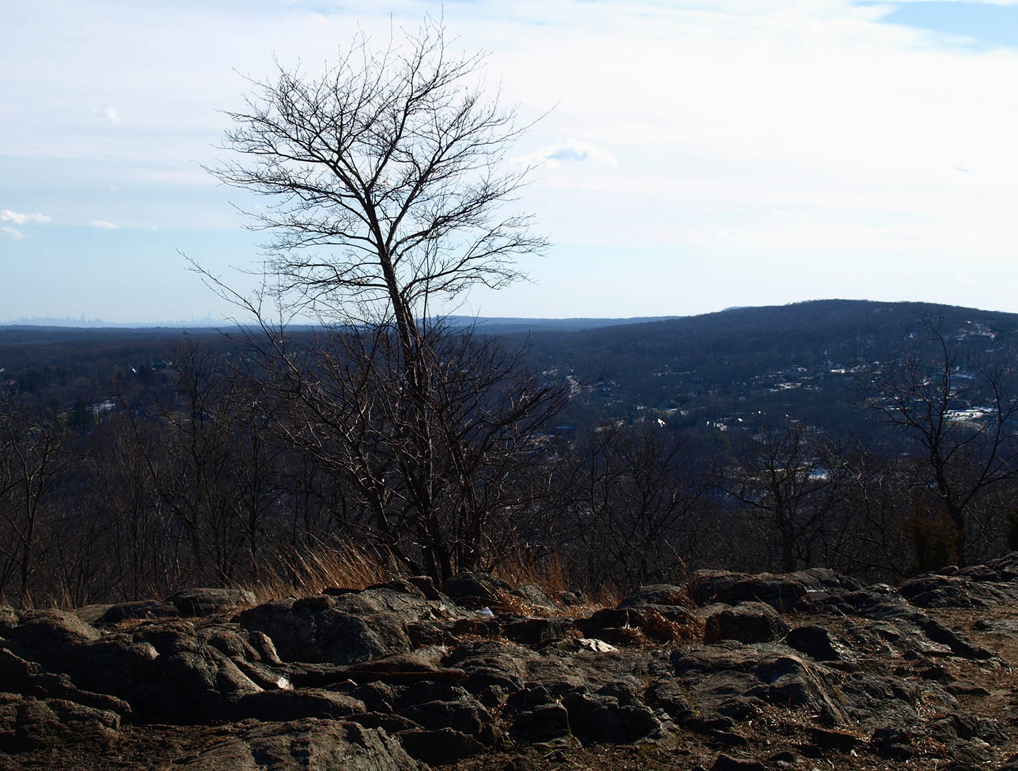 Skyline From Ramapo Valley County Reservation