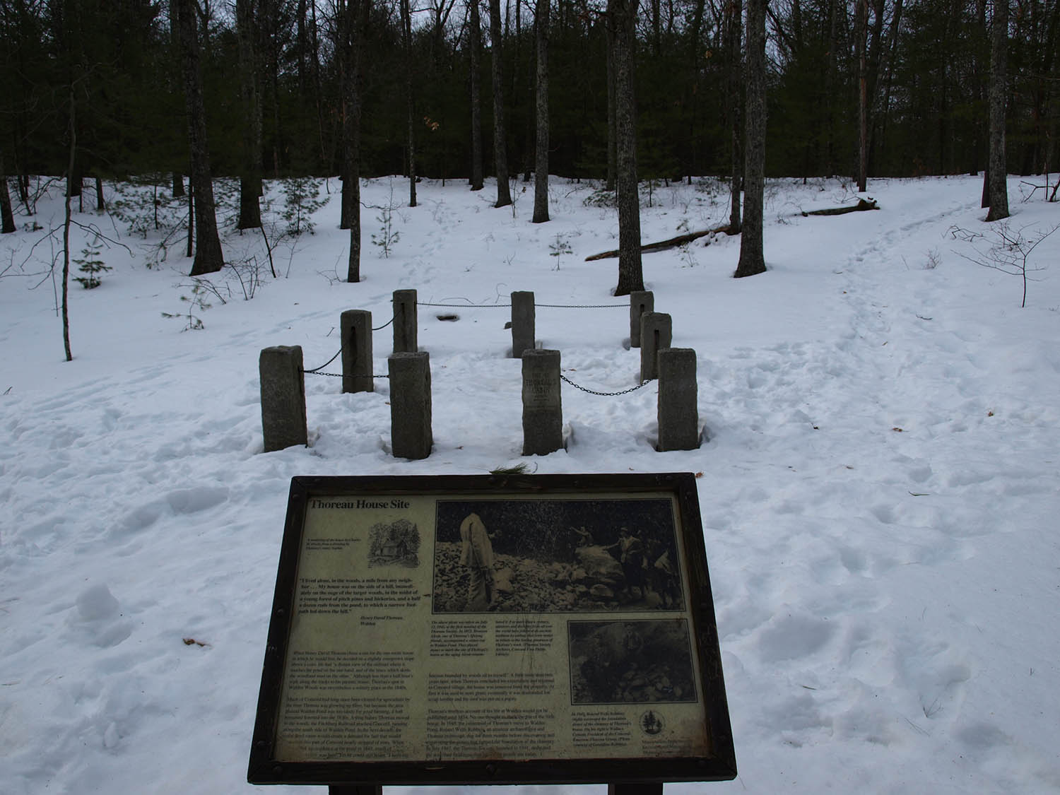 Thoreau Cabin Site