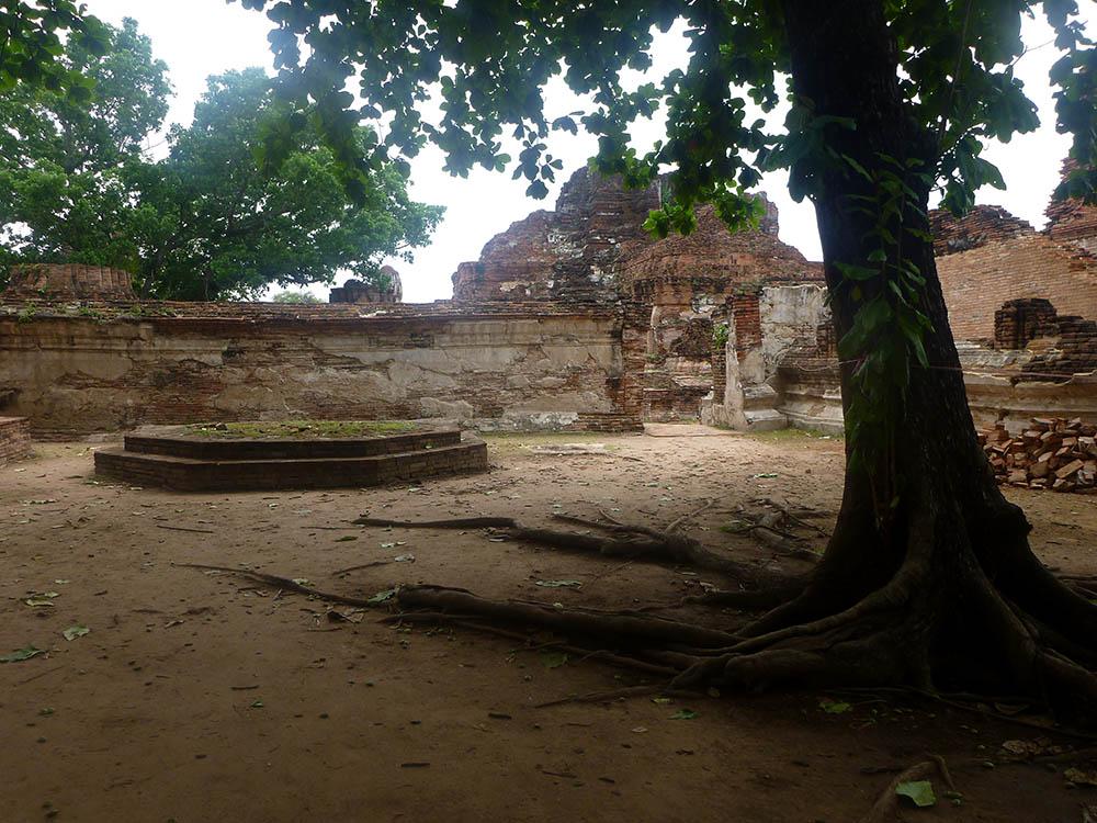 wat-maha-that-ruins